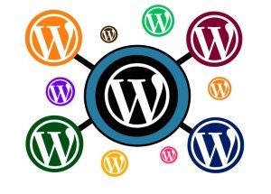 WordPress Experts Monmouth County NJ