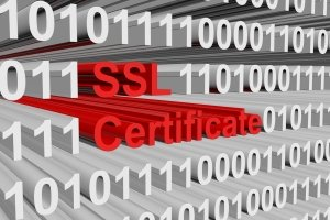 SSL Defined by Kinetic Knowledge